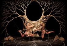 March 15 - April 1 / Gallery ONE / Garth KNIGHT / Arachne